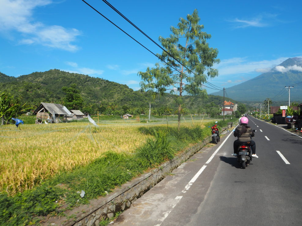 amed bali on the road